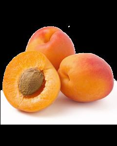 Apricot Kernel Oil - Virgin Organic