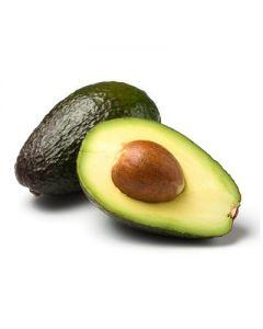 Avocado - Refined Organic