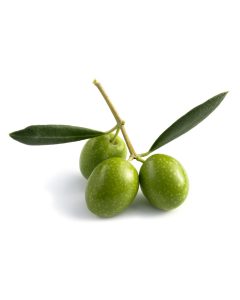Olive Wax