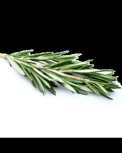 Rosemary Extract - 5%