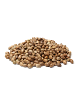 Hemp Seed Oil - Virgin Organic - Golden