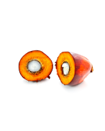 Palm Fruit Oil - RBD RSPO MB