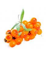 Seabuckthorn Fruit Oil - Virgin Organic