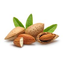 Almond Oil - Sweet Virgin Organic
