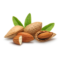 Almond Oil - Sweet Refined Organic Kosher