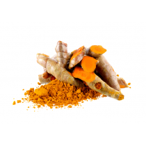 Turmeric Extract Powder - 95% Curcumin