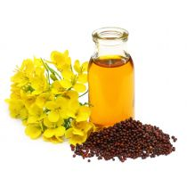 Mustard Seed Oil - Virgin Organic