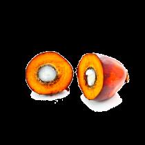 Palm Fruit Oil - Organic Fair Trade