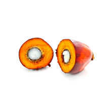 Palm Fruit Oil - Organic RSPO IP