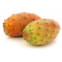 Prickly Pear Seed Oil - Virgin Organic