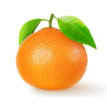 Tangerine Oil - Cold Pressed